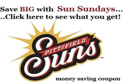 Suns Logo flipper 493x335