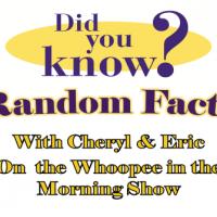 Random Facts 493-335