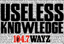 Useless_Knowledge_220x150