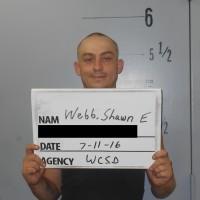 WEBB-SHAWN-E2.jpg