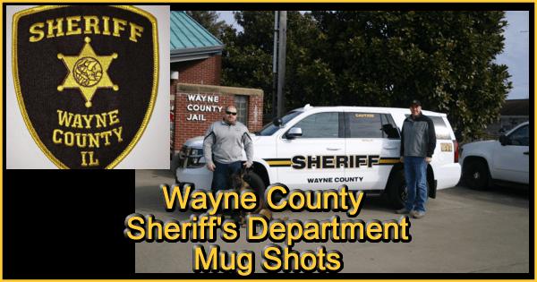 wayne county sheriff banner