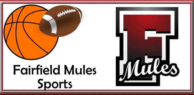 fairfield mules slider