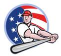 baseballflag