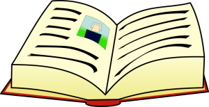 Book-2-300x154