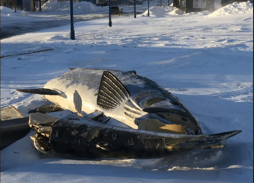 Valdez Fish Fell
