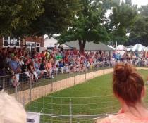 Rock County Fair pig races