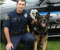 Janesville police K9 Hardy