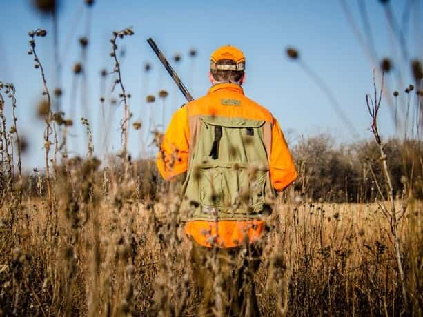 Michigan dnr urges hunters to wear orange for turkey for Michigan fishing license prices