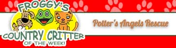 COUNTRY CRITTER OF THE WEEK PAGE BANNER 151004