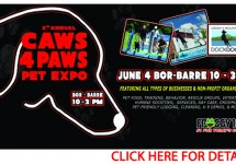 CAWS 4 PAWS WEB BANNER REVISED 160425