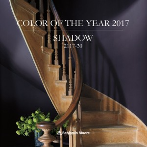 Shadow-Color-of-the-Year-2017
