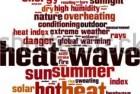 stock-vector-heat-wave-word-cloud-concept-vector-illustration-294577196