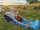 goat-yoga-1