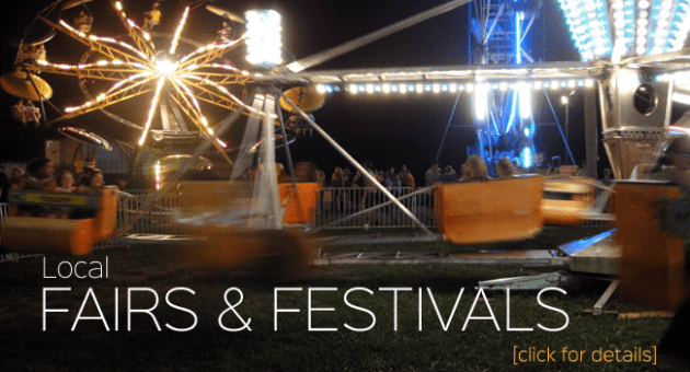 Fairs & Festivals LASER Flipper