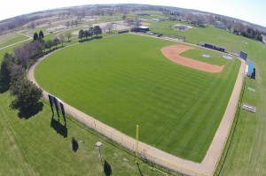 shawn williams field