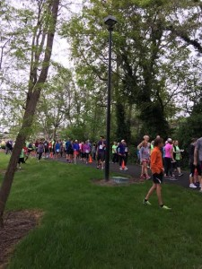 1100 walkers and runners in the rain!