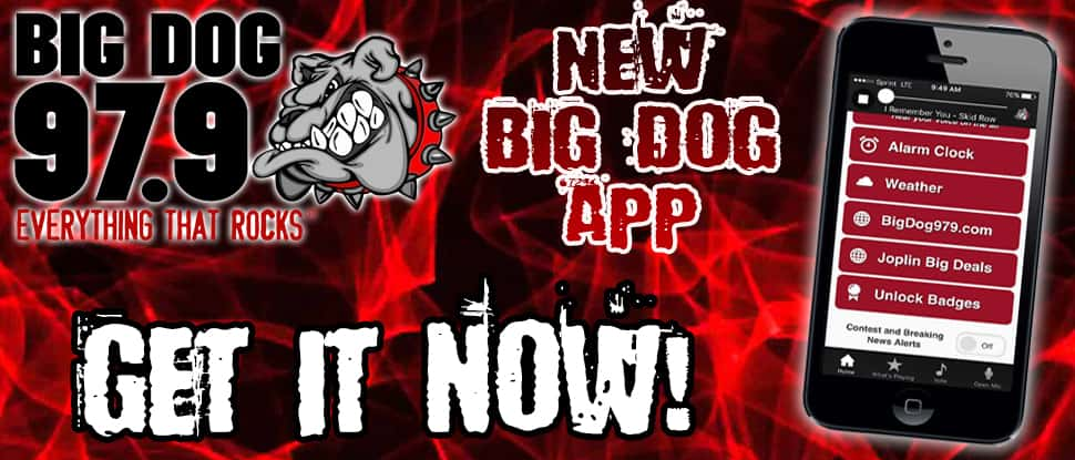 big dog new app