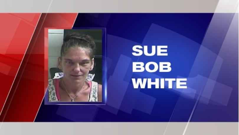 Sue bob white