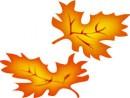 fall-tv.jpg
