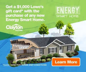 stfd_energy_smart_home_ad_300x250