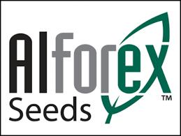 alforex