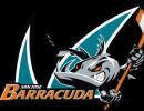 San_Jose_Barracuda
