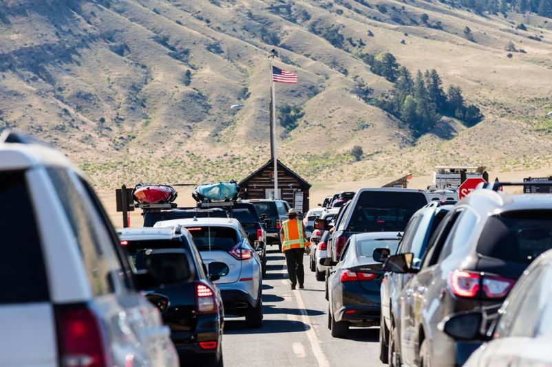 Yellowstone National Park attendance drops in June
