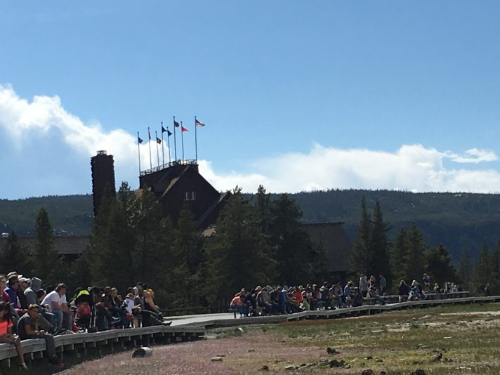 Yellowstone visitors say park is too crowded