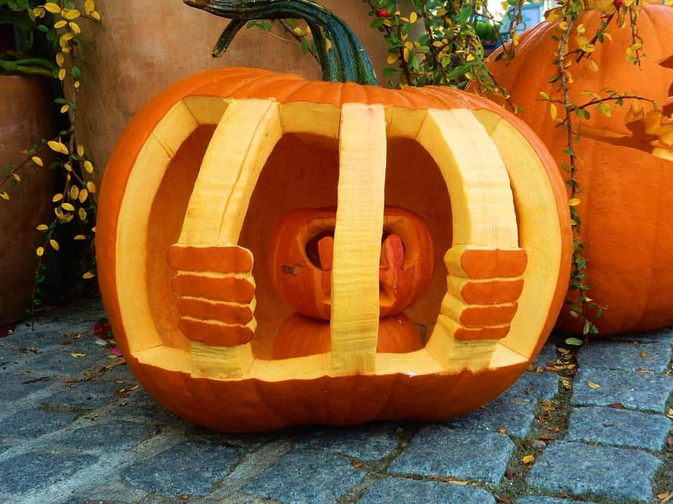 pumpkin-1020880_960_720