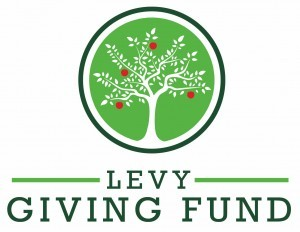 levyfamilyfund-2-300x232