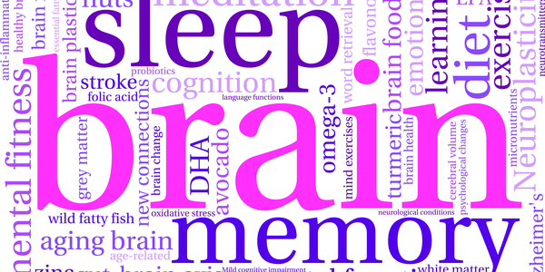 Image of text whoing bran, sleep, and other related items of sleeping well.