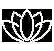 Lotus-flower-752018
