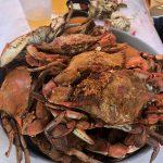 CheshireCrabs