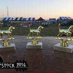 Woofstock2016-1_1462888155471_37915860_ver1.0_900_675