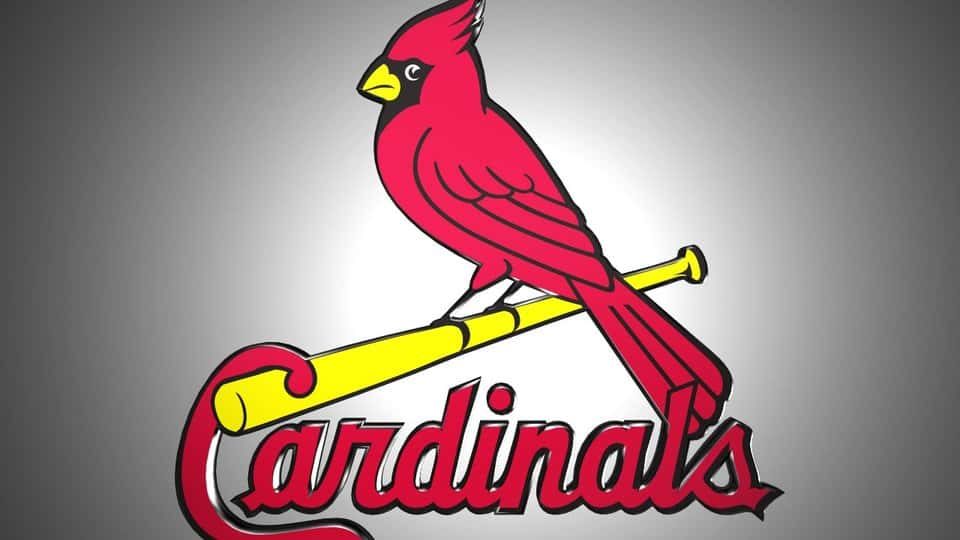 St  Louis Cardinals Place Catcher Yadier Molina On Injured