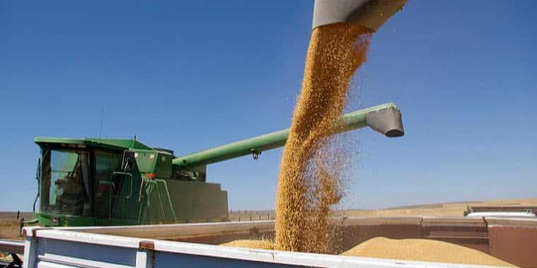 Farm Loan Bankruptcies and Delinquencies are Rising