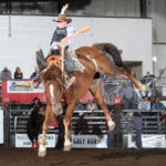IMG_2925©www.CowboyImages.net: Jacob Kammerer wins third place on J Bar J Rodeo's Stacked Deck at the 2020 Badlands Circuit Finals Rodeo. The horse, owned by Sparky Dreesen, is the Badlands Saddle Bronc of the Finals. Photo by Peggy Gander, Cowboy Images.