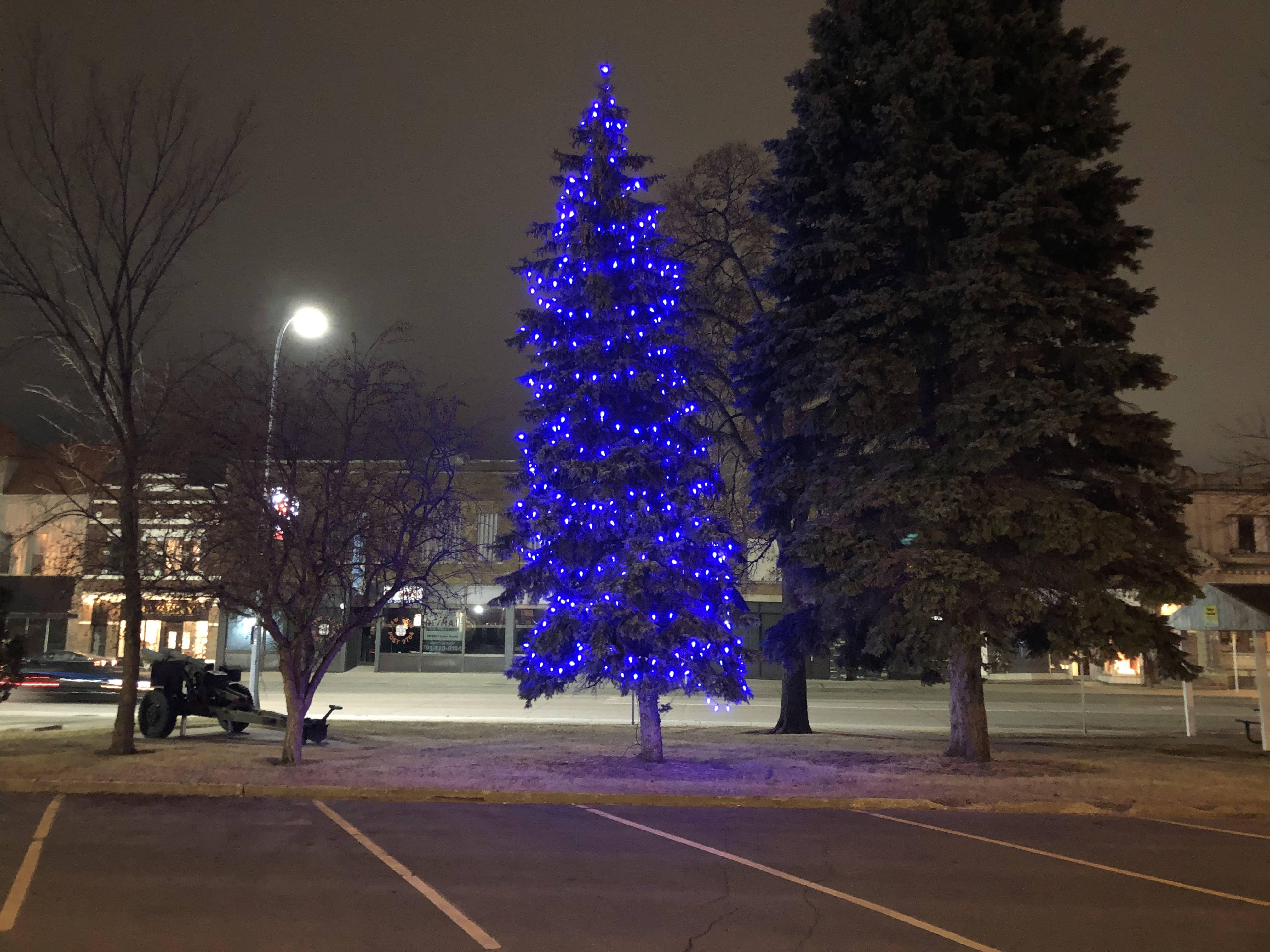 Blue Christmas Tree Honors Those Who Passed Away News Dakota
