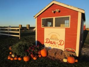 Dan D Farms
