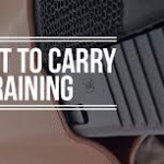Permit-to-Carry1
