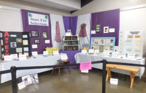 Some of the State Fair 4-H static exhibit qualifiers