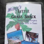 missys-grass-shack-2