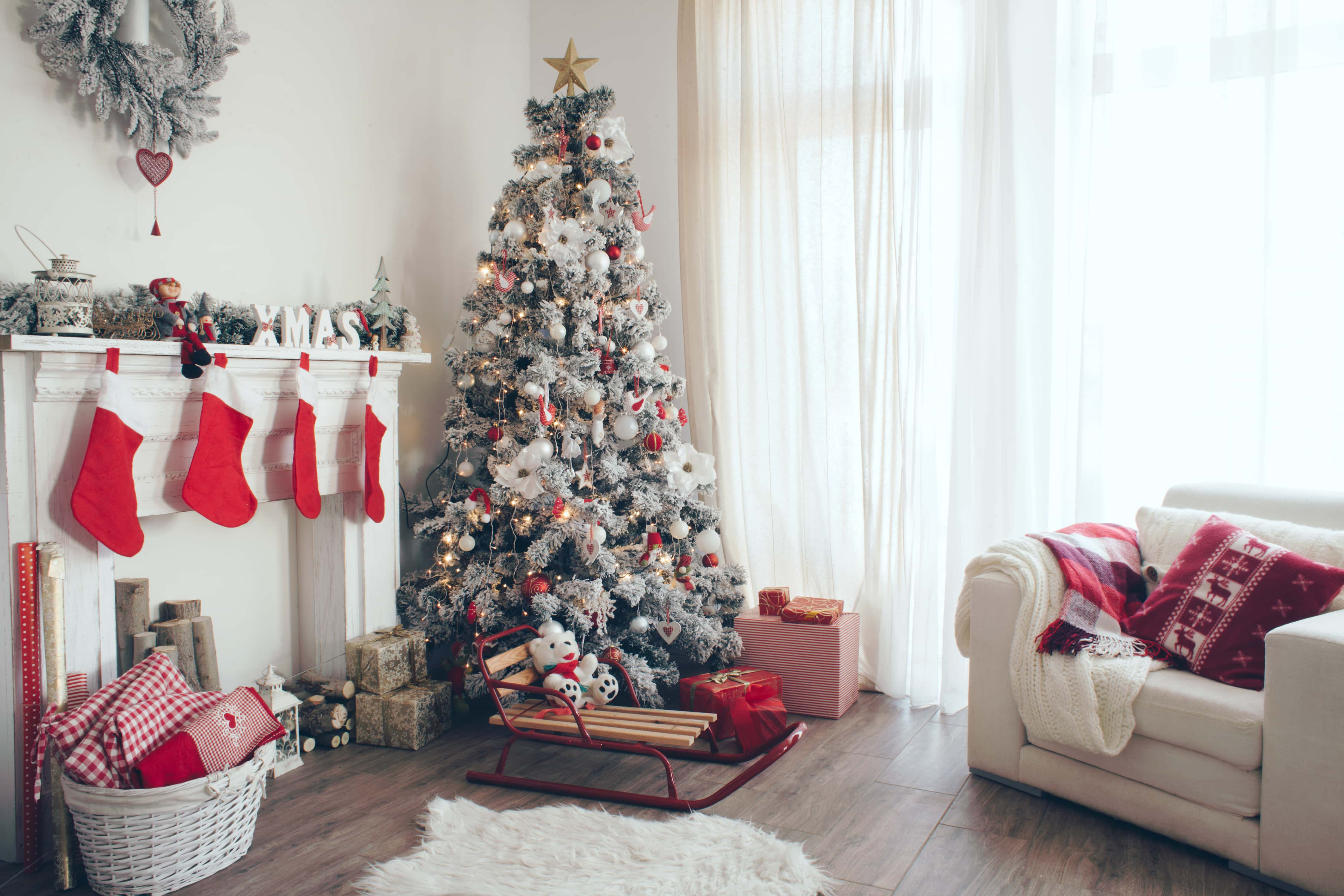 How to Choose the Perfect Christmas Tree | 951 WAYV