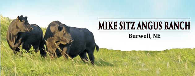 MikeSitz-Angus-Generic-Update