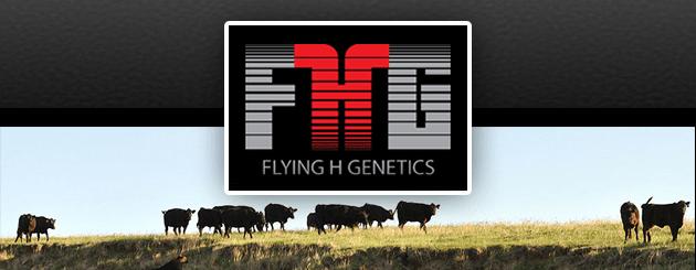 FlyingHGenetics-Generic-Slider