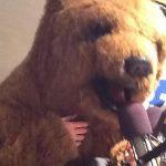 Dead Air Bear