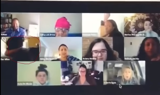 people in a zoom meeting