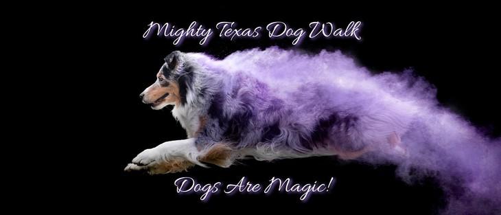 Texas Dog Walk Logo