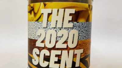 the 2020 scent