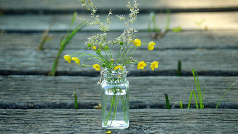 glass jar filled with flowers
